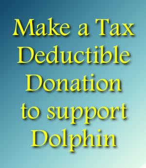 Tax Deductible Donations to Dolphin